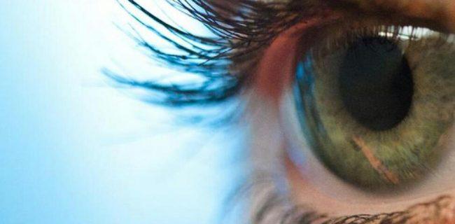 مقایسه چشم انسان و دوربین عکاسی!